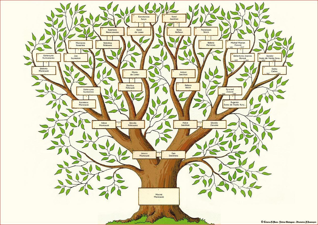 Drzewo genealogiczne 5 pokoleń Kim byli moi przodkowie