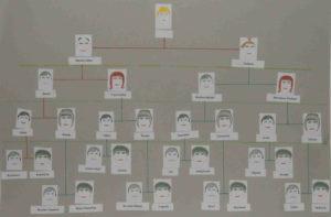 Jak zrobić drzewo genealogiczne - drzewo syna