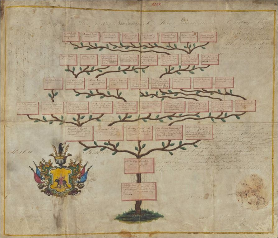 Drzewo genealogiczne Grothów