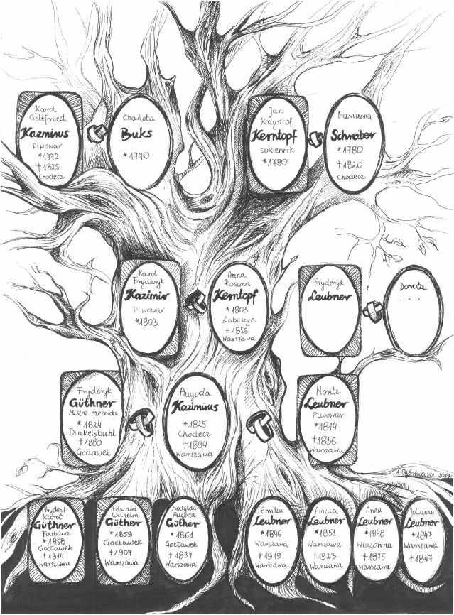 Jak wygląda drzewo genealogiczne Geber