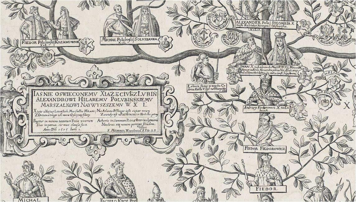 Jak wygląda drzewo genealogiczne Połubińscy