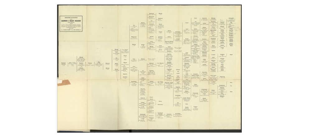 Jak wygląda drzewo genealogiczne Zarębowie