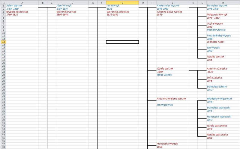Jak wygląda drzewo genealogiczne Excel