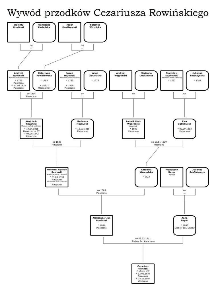 Drzewo genealogiczne rodziny Rowińskich wywód przodków Cezariusza Rowińskiego