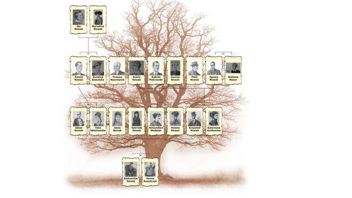 drzewo genealogiczne rodziny