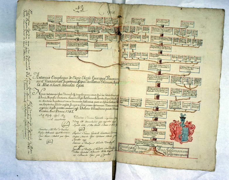 Jak wygląda drzewo genealogiczne drzewo genealogiczne rodziny Prus Jabłonowskich