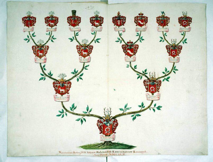 Jak wygląda wywód przodków Małachowscy