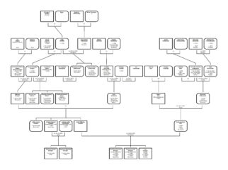 Koeppe drzewo genealogiczne rodziny