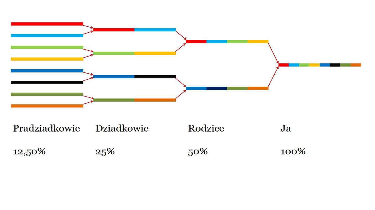 Pochodzenie etniczne według badań DNA
