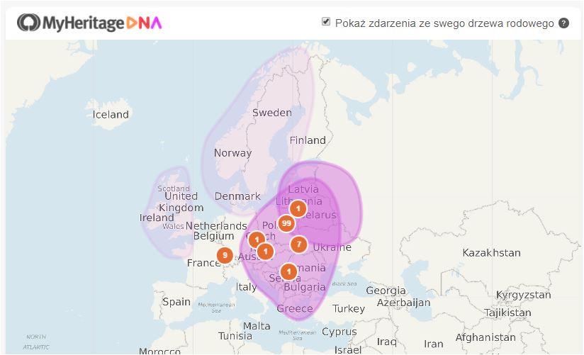 Pochodzenie etniczne według badań DNA MyHeritage