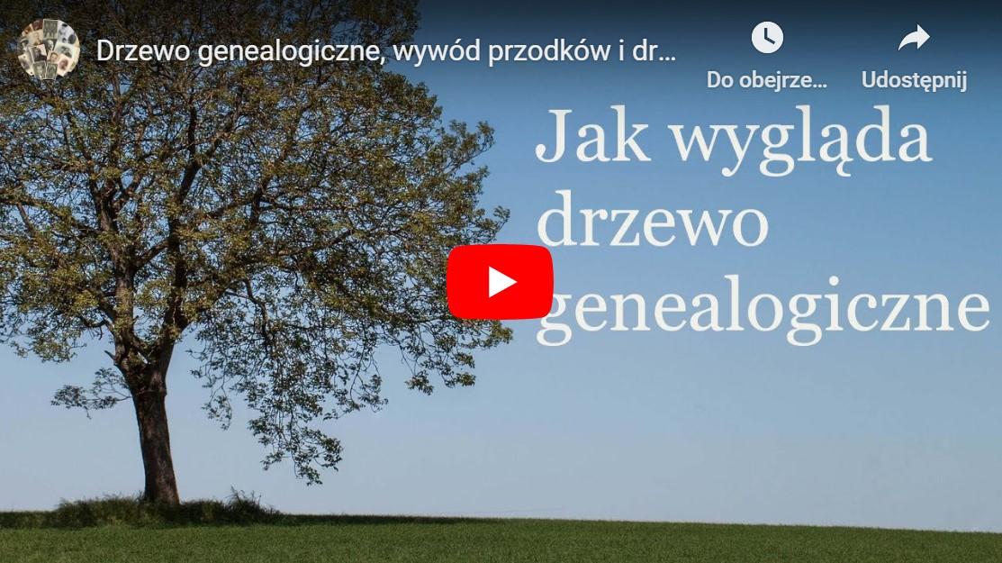 Jak wygląda drzewo genealogiczne film na YouTube
