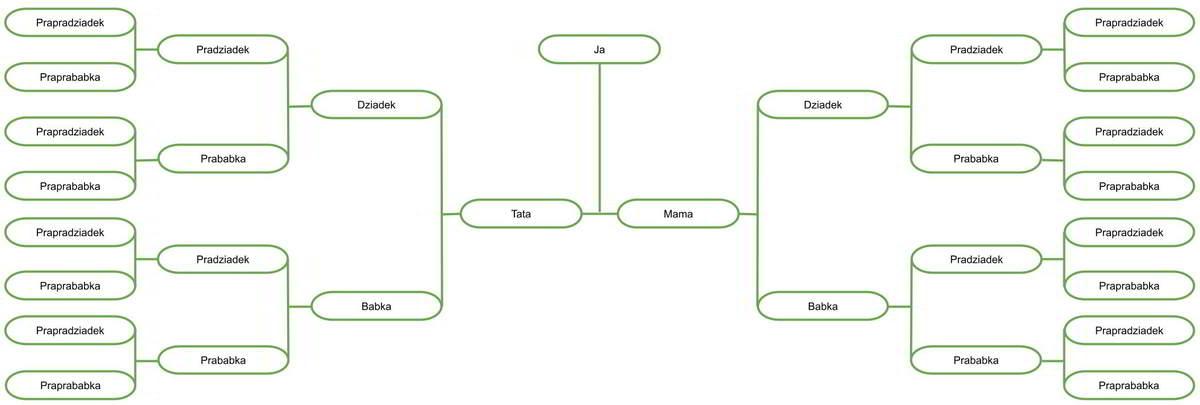 Szablon drzewa genealogicznego 5 pokoleń wykonany w Google drawings